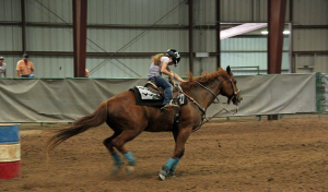 Does Your Arena Footing at your PA Horse Farm Need To Be Replaced?