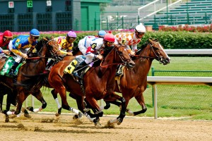 Is Pennsylvania's Most Wanted Thoroughbred In Your Barn?