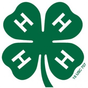 Support Eastern PA 4-H Members At Fundraising Events
