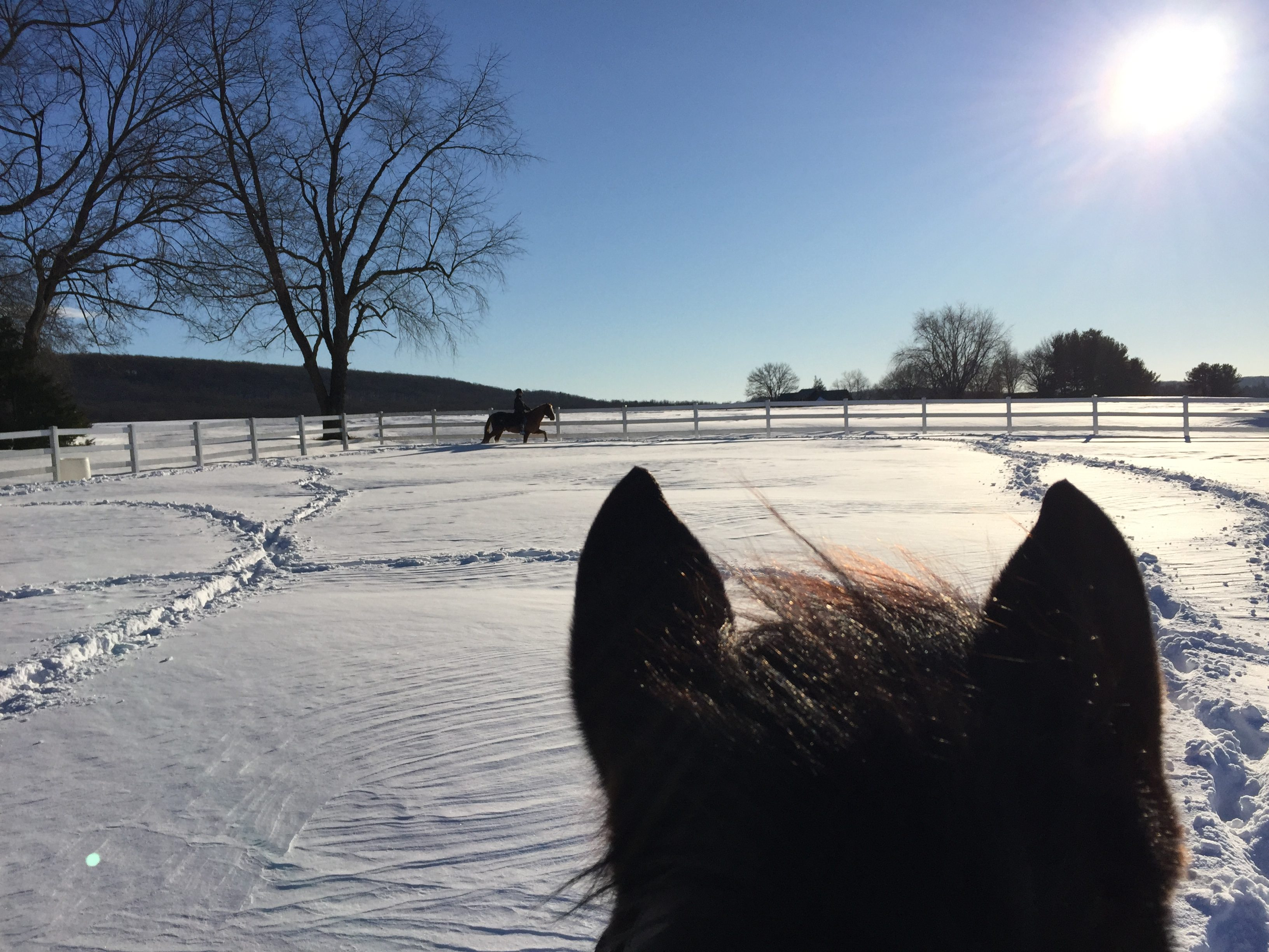 Is Your PA Horse Property Ready For Colder Weather?